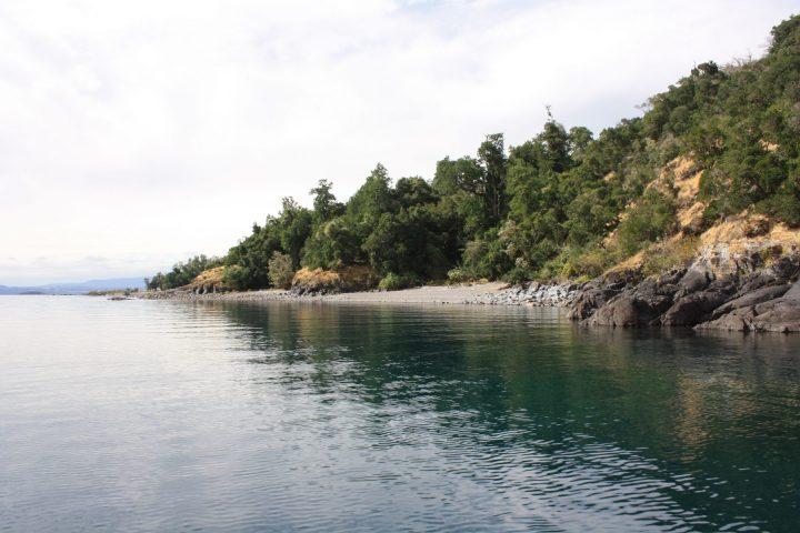 Lelikelen-ko Reconociendo Isla Colcuma - Lago Ranco