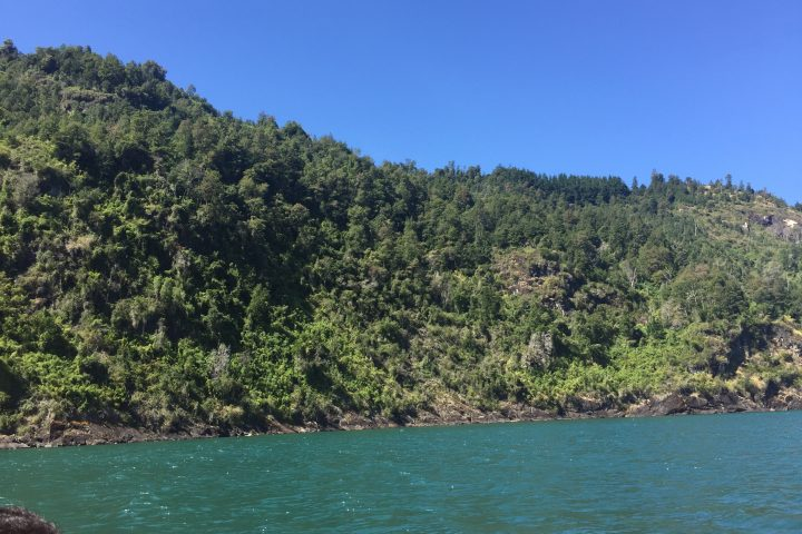lelikelen-ko.cl - lago Maihue - contacto@lelikelen-ko.cl