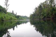 Lelikelen-ko río Bueno contacto@lelikelen-ko.cl